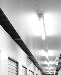 Linear Strip & Wrap Lights